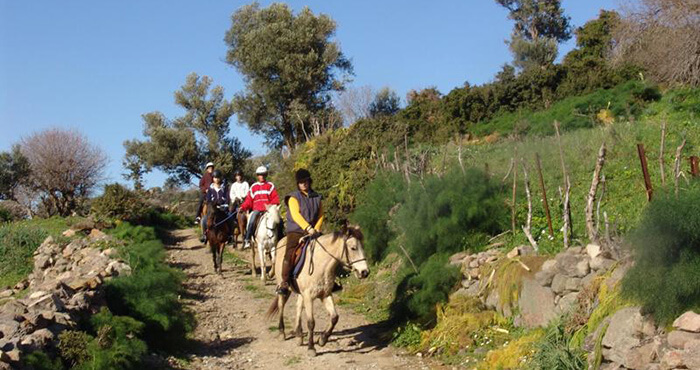 Horse Riding in Bodrum